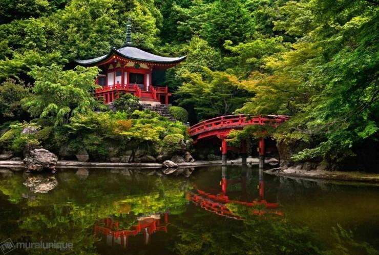 Top Forested-Daigo-Photo by muralunique