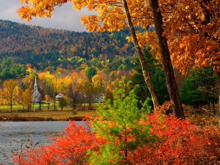 Top Forested-New Hampshire