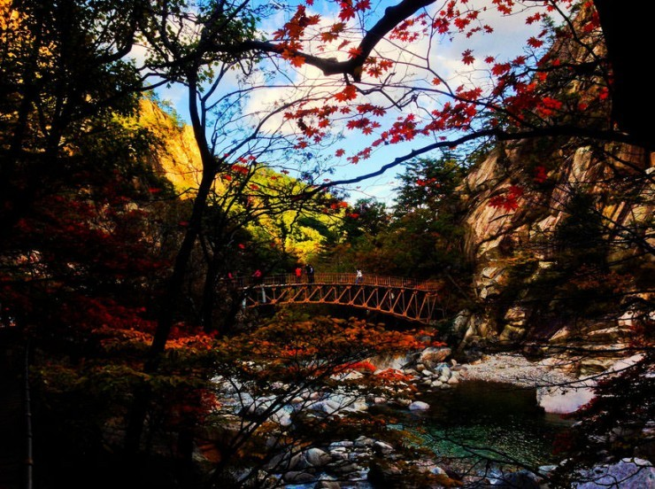 Top Forested-Soraksan-Photo by Xin Jie