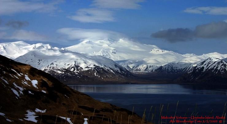 Aleutian-Photo by Abi Woddbridge