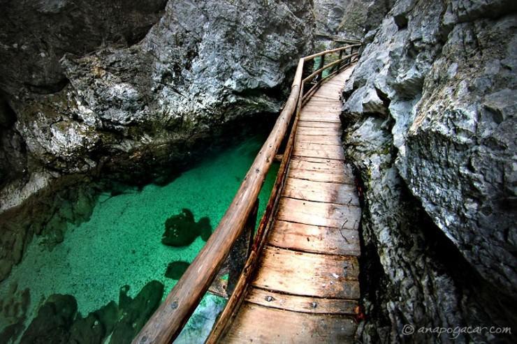 Bled-Photo by Ana Pogacar2