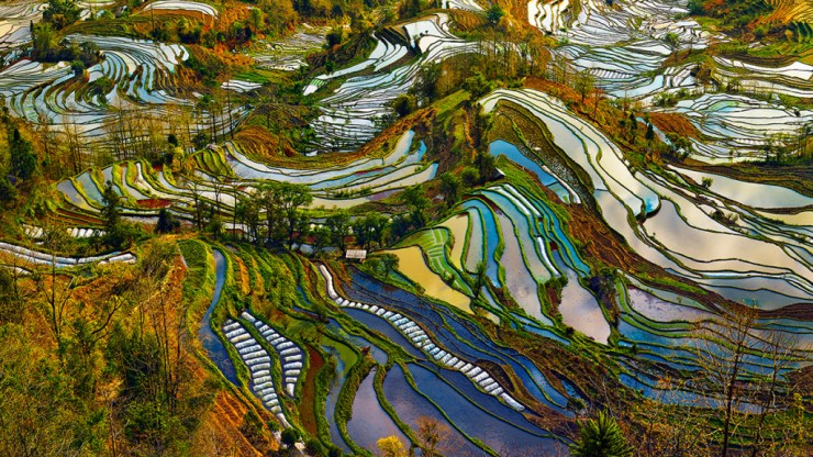 China-Photo by Thierry Bornier3