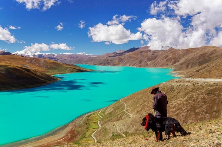 Himalayas-Photo by Harrison Zhao