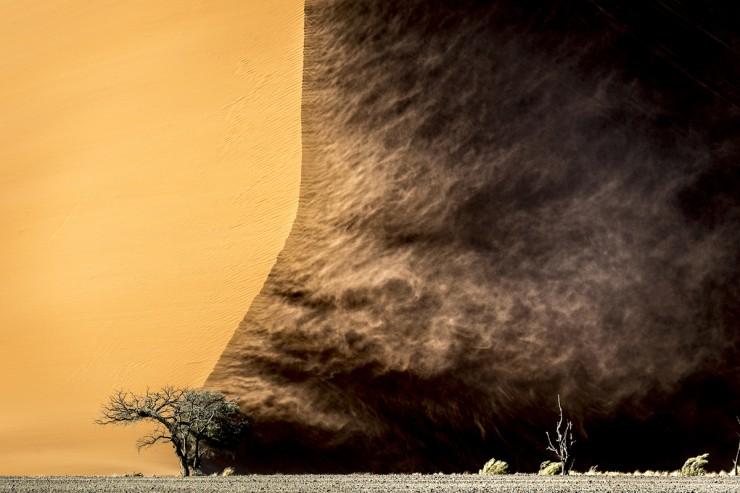 Namib-Photo by Dana Allen
