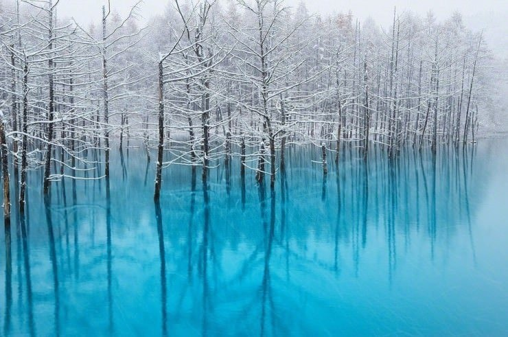 Blue-Photo by Kent Shiraishi