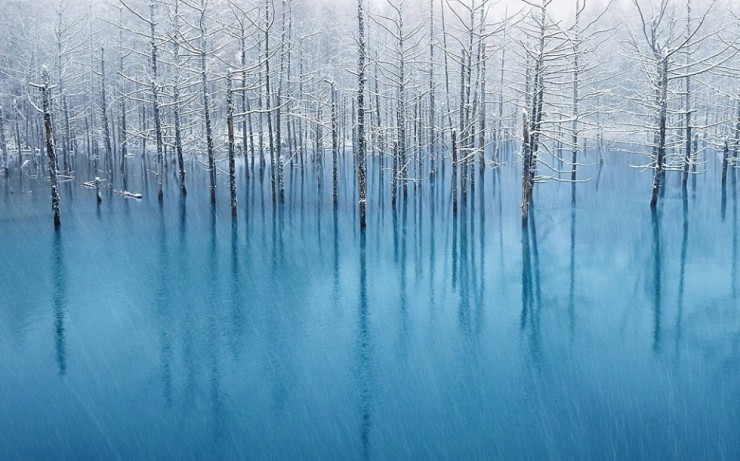 Blue-Photo by Kent Shiraishi2