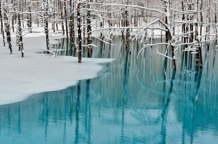 Blue-Photo by Kent Shiraishi3