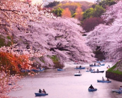Top 10 Incredible Vernal Locations in Japan