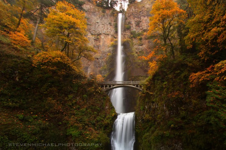 Multnomah-Photo by Steven Michael