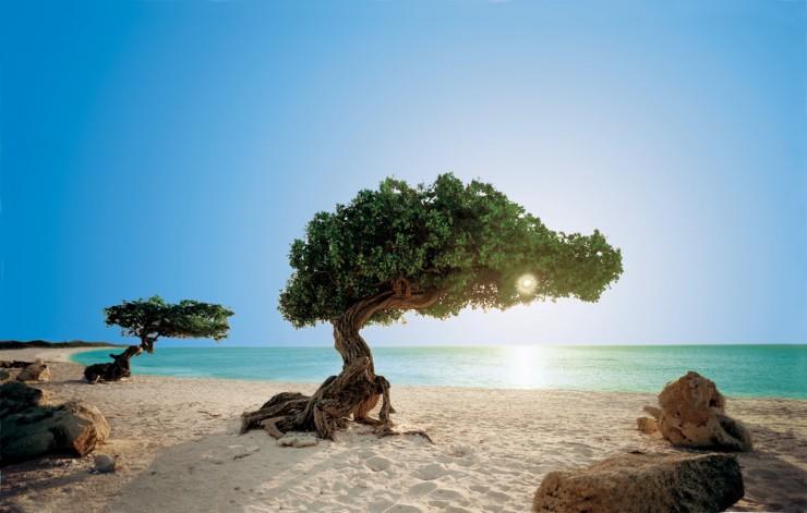 gp.Aruba.retouch2