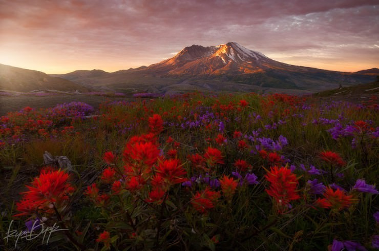 st-helens-Photo by Ryan Dyar