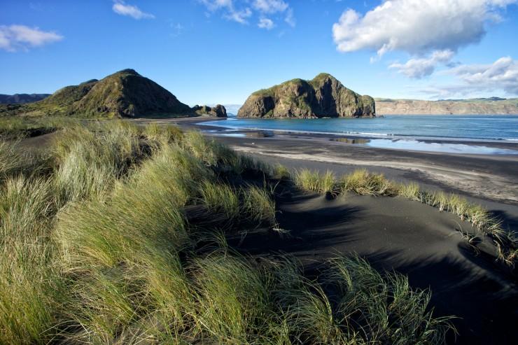 Waitakere-Photo from Manatours NZ