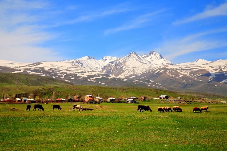کوه آرگاتس ارمنستان