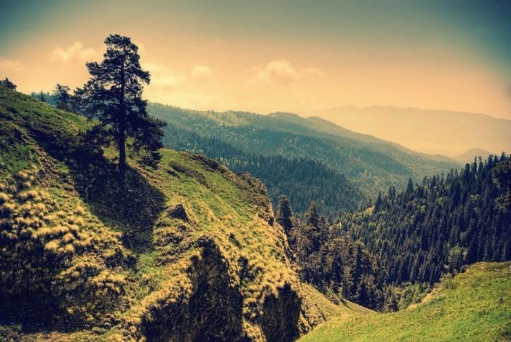 جاذبه گرجستان