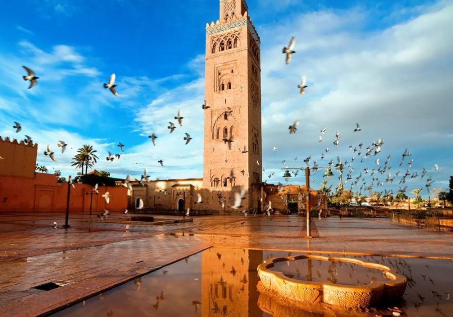 Top 10 Amazing Things to See and Do in Morocco