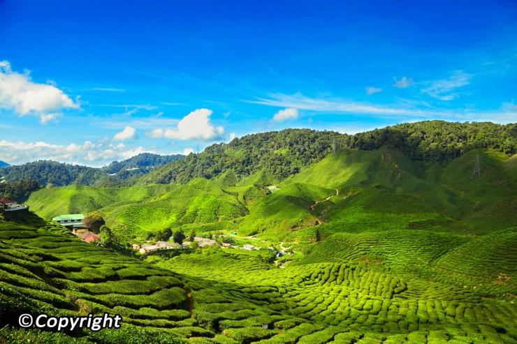 جاذبه های مالزی کوالالامپور