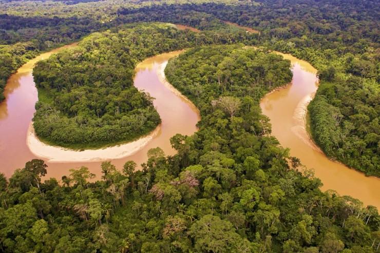 amazone Photo by Rainforest Trust