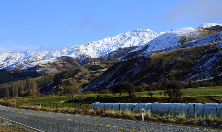 Cordora, New Zealand