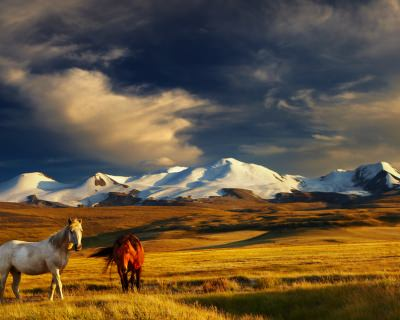 7 Reasons Mongolia Should Top Your 2017 Bucketlist
