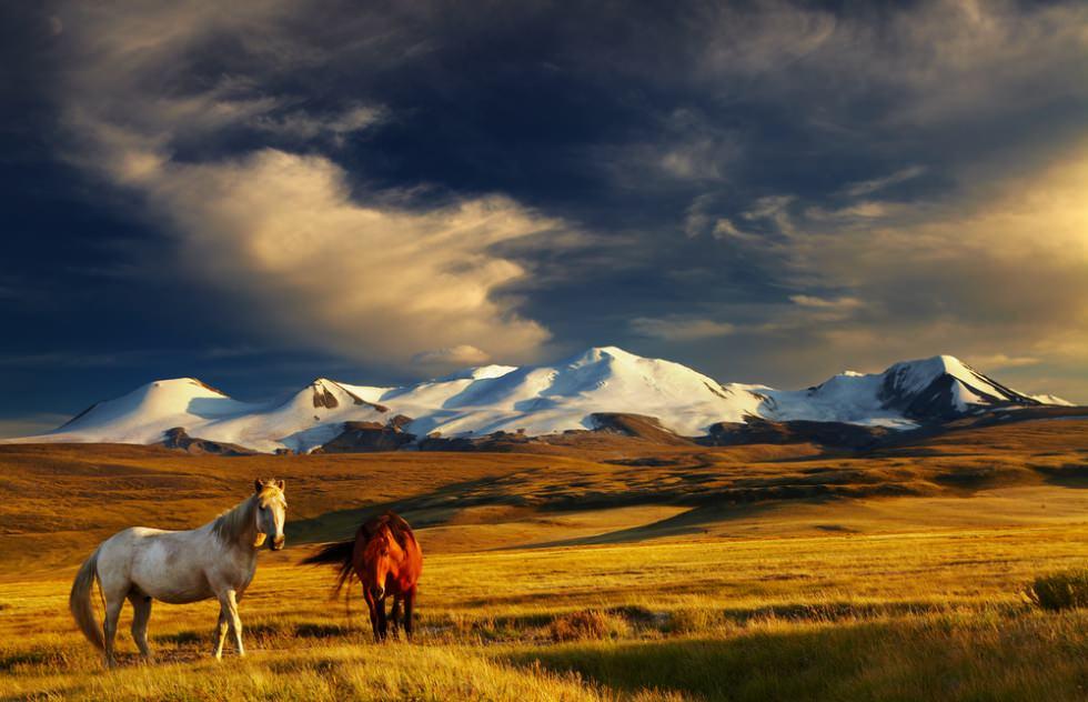 7 Reasons Mongolia Should Top Your 2017 Bucketlist