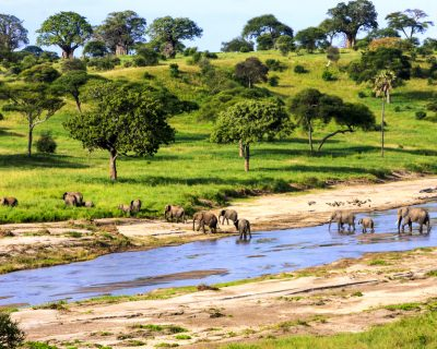 First-Time Africa: Ideas For Your Trip