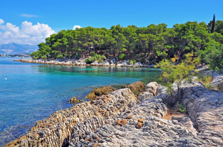 Forest at the sea, Marjan park, Split, Croatia