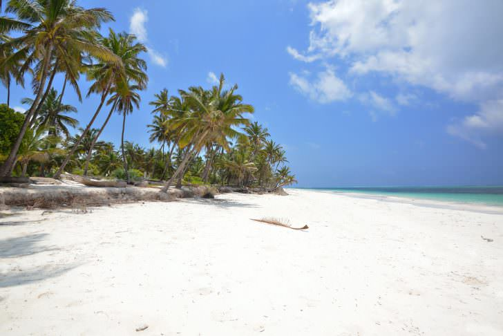 ساحل زنگبار