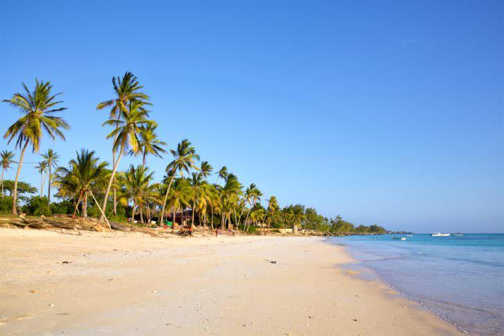 ساحل ماسه ای با درختان نخل، Kizimkazi، زنگبار، تانزانیا