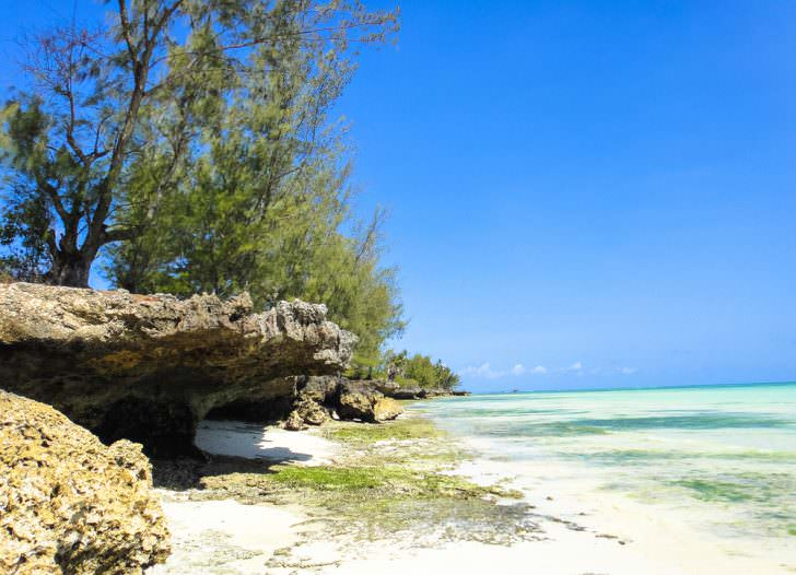 Wild paradise beach near Kizimkazi village in Zanzibar.