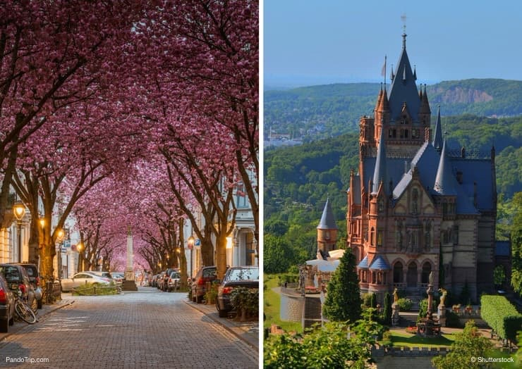 Top 10 Places to See in Bonn, Germany
