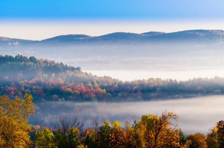 New England's Foliage