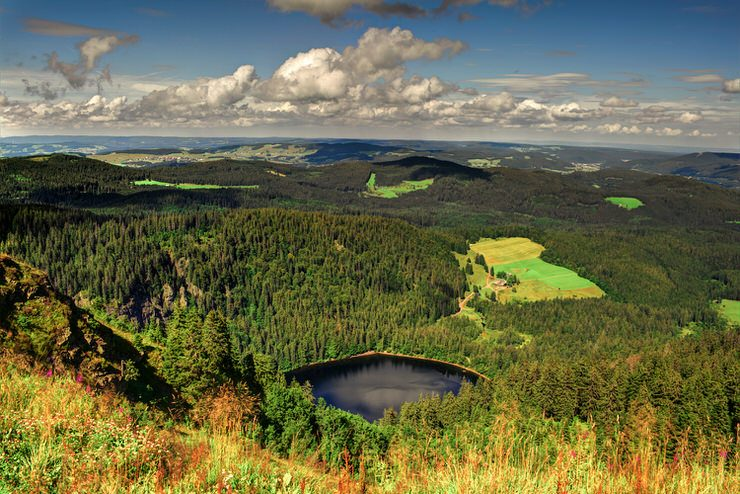 The Black Forest National Park, Germany