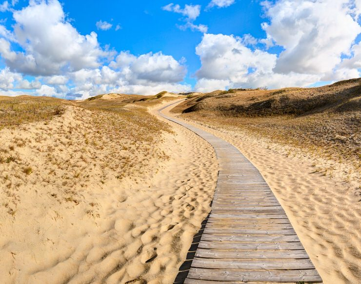 Wooden path into the Dunes. Curonian Spit National Park, Lithuania