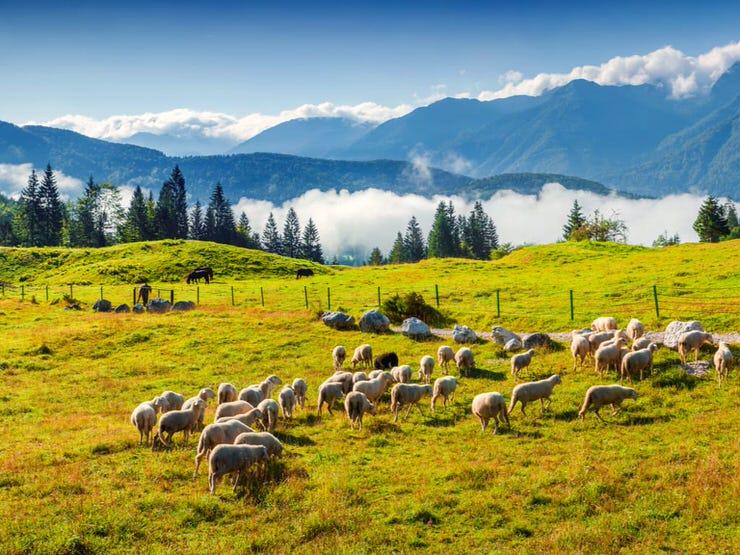 Triglav National Park, Julian Alps, Slovenia