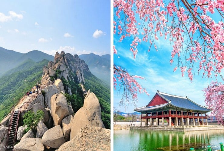 The Ultimate South Korea Travel Guide