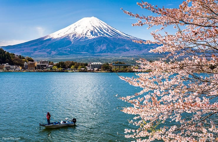 Mount Fuji in Japan spring season