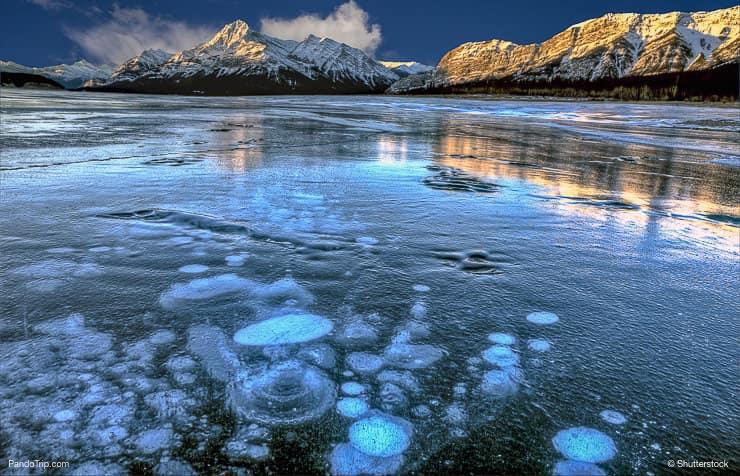 Abraham Lake Bubbles