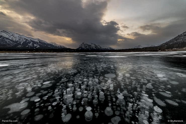 Abraham Lake with Ice bubbles