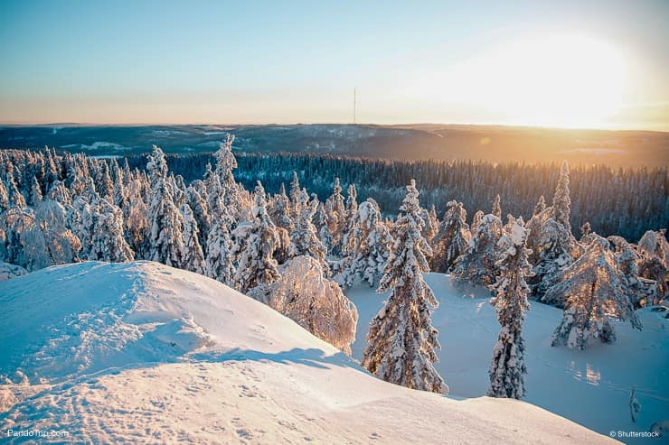Koli National Park in Finland during winter