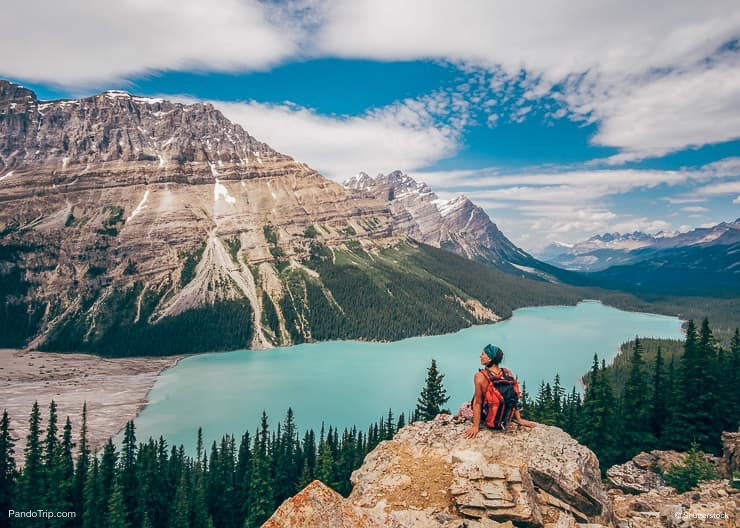A Spectacular Turquoise Peyto Lake in Canada