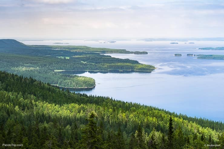 Scenic Landscape of Koli National Park, Finland