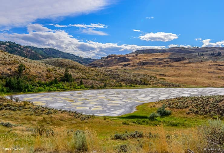 Spotted Lake in British Columbia