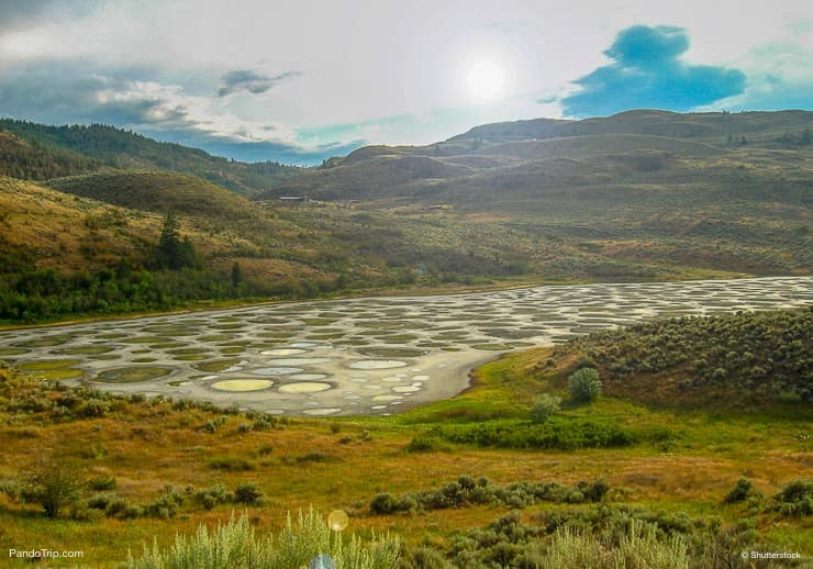 Spotted lake in Okanagan Vallye, British Columbia