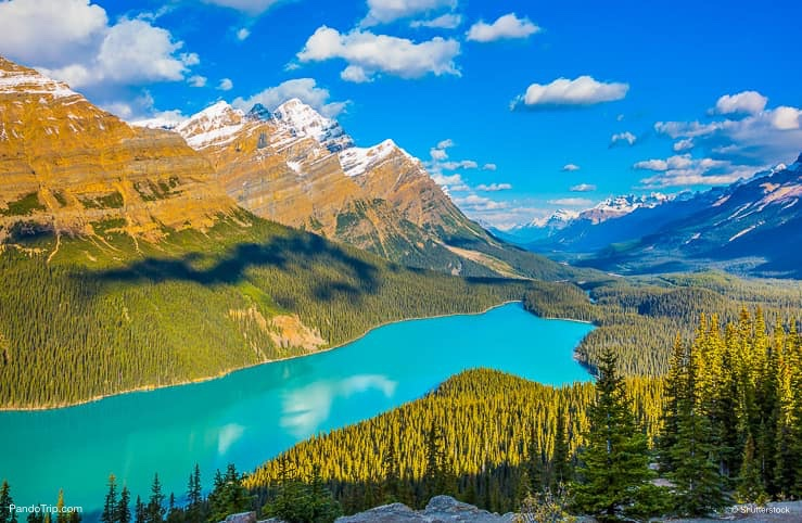 Turquoise Lake Peyto in Banff National Park, Canada
