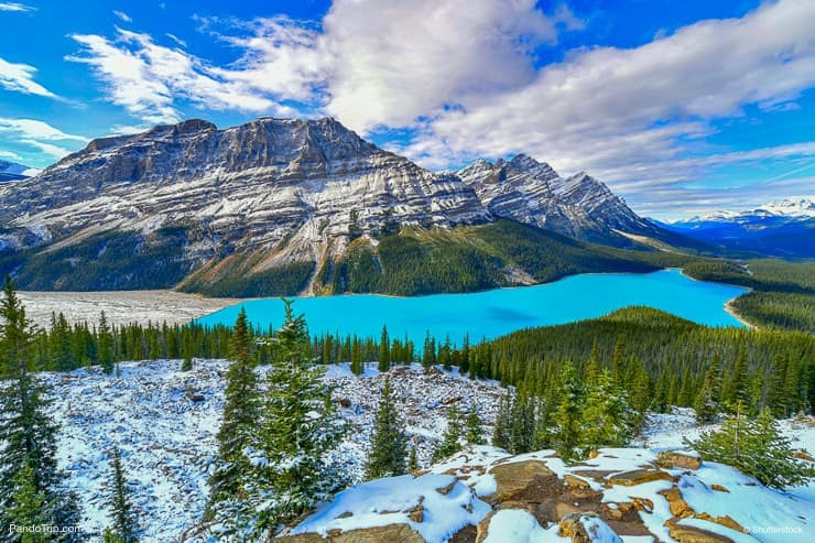 View from Bow Summit of Peyto lake in Banff National Park, Alberta, Canada