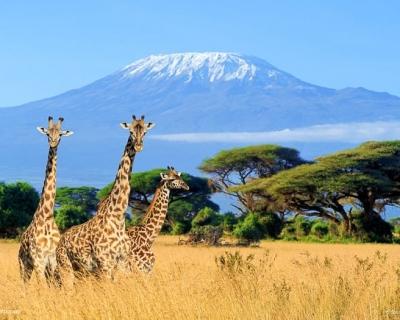 Top 10 Incredible Natural Wonders in Africa