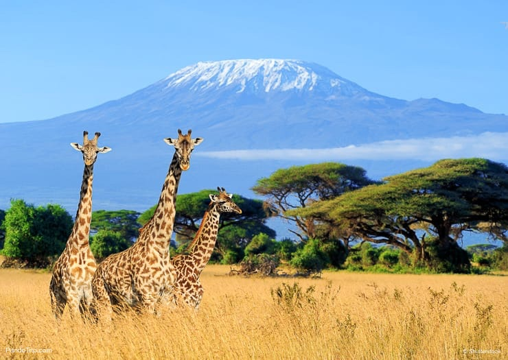 Top 10 Incredible Natural Wonders in Africa