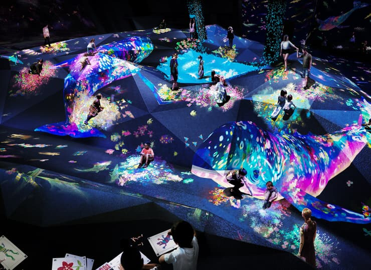 Athletics Forest, TeamLab Borderless, Mori Digital Art Museum