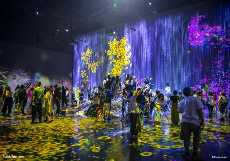 Borderless World, TeamLab Borderless, Mori Digital Art Museum