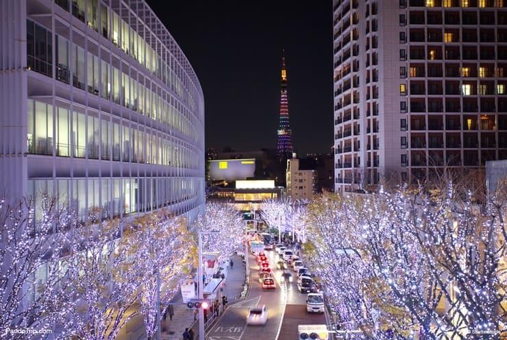 Keyakizaka Street illumination, Roppongi Hills Christmas, Tokyo, Japan